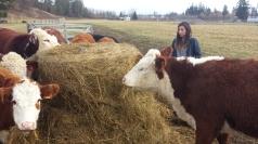 farm life 789